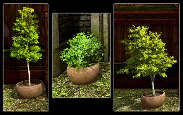 TT Shroud of the Avatar Potted Tree Pack
