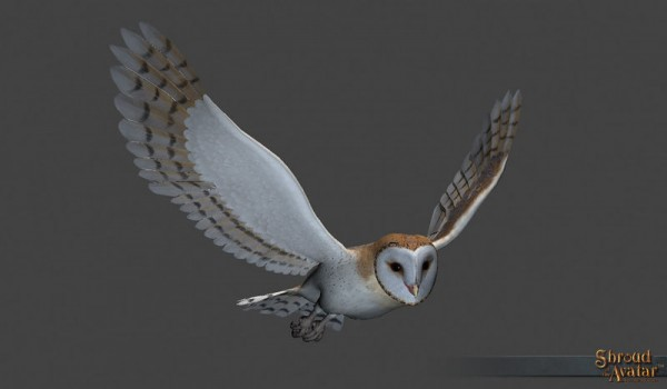TT Shroud of the Avatar Barn Owl Decoration Pet