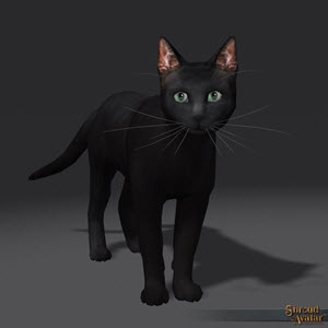 TT Shroud of the Avatar Black Cat Pet